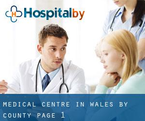 Medical Centre in Wales by County - page 1